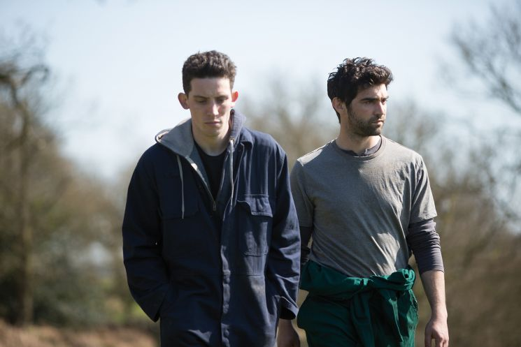 God's Own Country (Francis Lee)